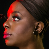 BWW Interview: Ledisi Channels & Honors Nina Simone in LEDISI: THE LEGEND OF LITTLE G Photo