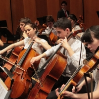 Hoff-Barthelson Music School Holds Auditions For The 2021 Season Of The Festival Orchestra Photo