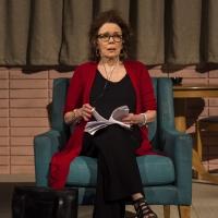 BWW Review: DANA H. at Goodman Theatre