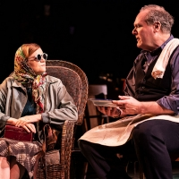 BWW Review: Conor McPherson's Somber And Touching Bob Dylan Tapestry GIRL FROM THE NO Photo