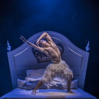 Photos & Video: Go Inside SWAN LAKE, to be Presented as Part of MATTHEW BOURNE'S NEW ADVEN Photo