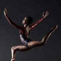 Nai-Ni Chen Dance Company Launches The Bridge: Virtual Dance Classes August 3-7 Photo