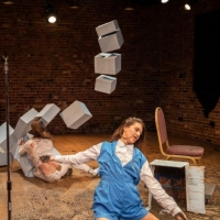 VIDEO: Brick Theater Will Stream Lisa Fagan's RED CARROTS and CATCHES NO FLIES Tonigh Photo