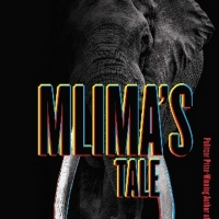TCG Books Publishes MLIMA'S TALE By Lynn Nottage Photo