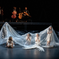 Review: Michael Keegan-Dolan/Teaċ Daá��sa's Loch na hEala (Swan Lake) Ultimately Proves Childhood Joy is Universal