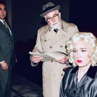THE UNEXPECTED GUEST is Opening at the Long Beach Playhouse