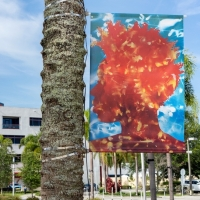 Museum of Contemporary Art, North Miami to Present 'After the Rain Comes Light: Portraits Photo