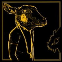 Shakey Graves to Release 'Roll The Bones X' Double LP Photo