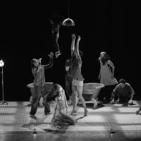 Participarán 16 Propuestas Coreográficas En Las Eliminatorias Del Premio Nacional De Danza Guillermo Arriaga 2021
