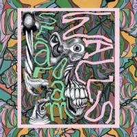 Seafoam Walls Announce Debut LP 'XVI' Photo