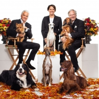 NBC to Broadcast the NATIONAL DOG SHOW on Thanksgiving Photo