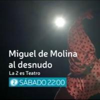 STAGE TUBE: Tráiler de MIGUEL DE MOLINA AL DESNUDO Photo