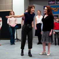 BWW TV: What Is FLYING OVER SUNSET All About? The Broadway Cast Explains! Photo