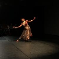 Indo-American Arts Council Presents Virtual Erasing Borders Dance Festival Photo