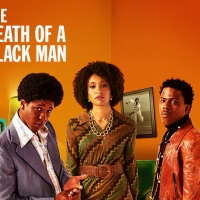 Cast Announced For THE DEATH OF A BLACK MAN, Running This Spring and Summer at Hampst Photo