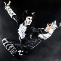 BWW Review: CATS at Orpheum Theater Photo