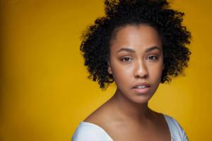 Casting Announced for Atlantic's IMMIGRANT MIXFEST