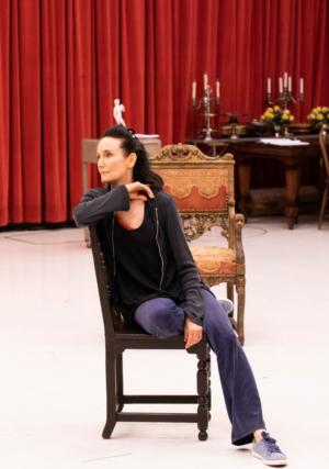 The Goodman's BERNHARDT/HAMLET Begins Performances September 14th