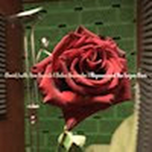 New Single From Bauhaus' David J