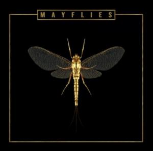 The Bergamot's New Album 'Mayflies' Out Now