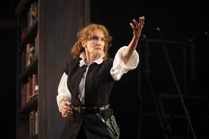 BWW Review: BERNHARDT/HAMLET at Goodman Theatre