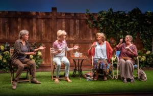 BWW Review: ESCAPED ALONE at Signature Theatre