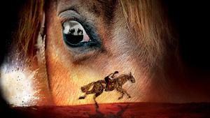 BWW Interview: Scott Miller talks WAR HORSE as it extends its journey to Australia in 2020.