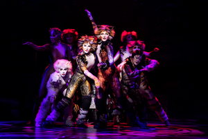 BWW Review: CATS Prowls and Prances Into the Hobby Center
