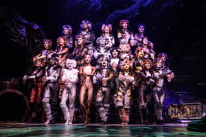 BWW Interview: Timothy Gulan of CATS at Majestic Theatre