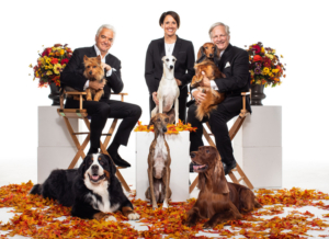 NBC to Broadcast the NATIONAL DOG SHOW on Thanksgiving