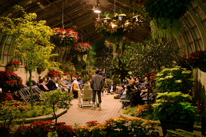 Midsommer Flight's TWELFTH NIGHT Will Play at The Lincoln Park Conservatory