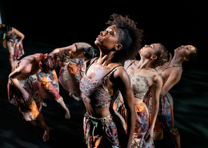 BWW Review: Cityscapes & Digital Engagement with Elisa Monte Dance