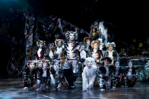 BWW Review: CATS at the Sands Theatre, what a fantastic mewsicle!