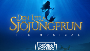 AUDITION FOR THE LITTLE MERMAID at Ericsson Globe