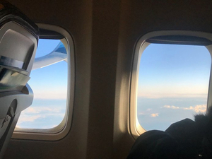 BWW Blog: Coming Home for the Holidays