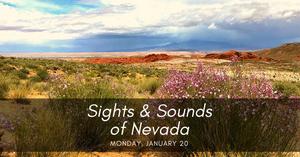 2020 Las Vegas Natural History Museum and Las Vegas Philharmonic Music Van Kick-Off New Collaboration