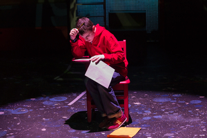 BWW Review: THE CURIOUS INCIDENT OF THE DOG IN THE NIGHT-TIME, Raleigh Little Theatre