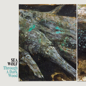 Sea Wolf Announces First New Album In Six Years