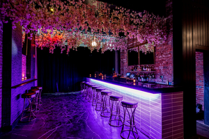 Vesper Owners Are Debuting New Cocktail and Music Hideaway 'Leda and The Swan'