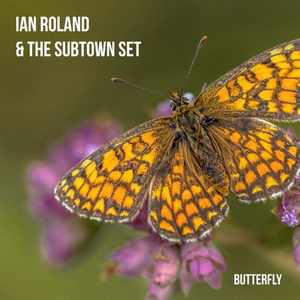 Ian Rowland and the Subtown Set Drop New Single 'Butterfly'