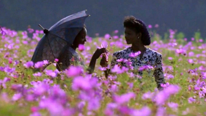 The Ridgefield Playhouse to Screen THE COLOR PURPLE