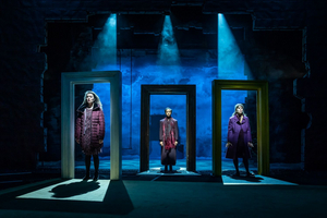 BWW Review: NORA: A DOLL'S HOUSE, Young Vic