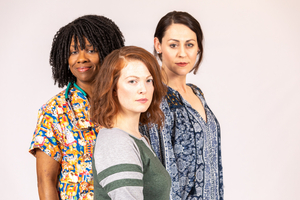 MARY JANE Will Run at Meadow Brook Theatre in March