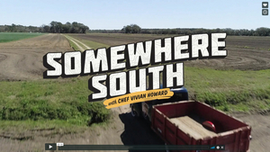 SOMEWHERE SOUTH with Vivian Howard Airs March 27 on PBS Friday
