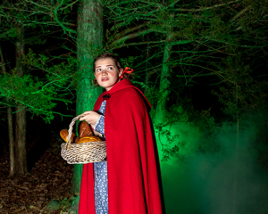 BWW Review: INTO THE WOODS at Red Curtain Theatre Get Their Wishes