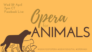 Opera Memphis Continues Online 30 DAYS OF OPERA Series With OPERA FOR ANIMALS
