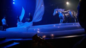 Cirque du Soleil Introduces New Content Formats For Friday Specials