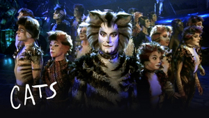 BWW Review: CATS, The Shows Must Go On