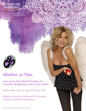 BWW Spotlight Series: Meet Comedian Carla Collins, Host of SHELTER AT 'OM: Comedic Meditation Benefiting the Whitefire Theatre