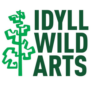 Idyllwild Arts Presents Reimagined JAZZ IN THE PINES Concert Series for Summer 2020